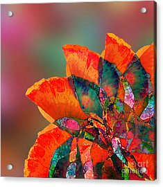 Abstract Flower Acrylic Print by Klara Acel