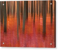 Abstract Forest 2 Acrylic Print by Leland D Howard