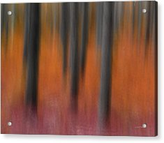 Abstract Forest 4 Acrylic Print by Leland D Howard
