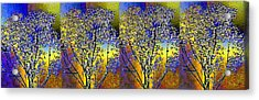 Abstract Fusion 100 Acrylic Print by Will Borden