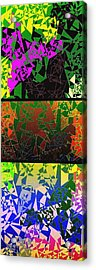 Abstract Fusion 193 Acrylic Print by Will Borden