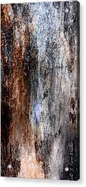 Abstract G - From Series 1 Acrylic Print by J Larry Walker