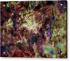 Acrylic Print featuring the photograph Abstract Grapes On Vine Number Four by Bob Coates
