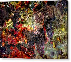 Acrylic Print featuring the photograph Abstract Grapes On Vine Number Two by Bob Coates
