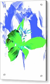 Abstract Green Acrylic Print by Cathie Tyler