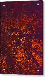 Abstract In Snow And Leaves Acrylic Print by Michael Fox
