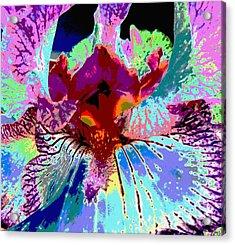 Abstract Iris Acrylic Print by Sally Simon