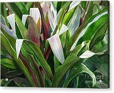Abstract Leaf Design Acrylic Print by Sharon Freeman