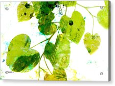 Abstract Leaves Green And White  Acrylic Print
