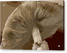 Acrylic Print featuring the photograph Abstract Mushroom by Kathy Ponce