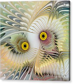 Abstract Owl Acrylic Print by Klara Acel