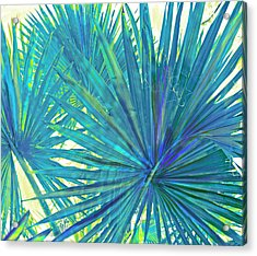 Abstract Palm 2 Acrylic Print by Jane Schnetlage