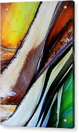 Acrylic Print featuring the photograph Abstract Palm 3 by Heather Green
