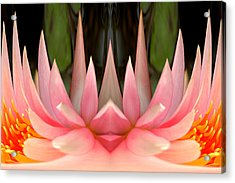 Abstract Pink Water Lily Acrylic Print