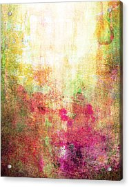 Abstract Print 14 Acrylic Print by Filippo B
