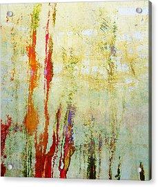 Abstract Print 17 Acrylic Print by Filippo B