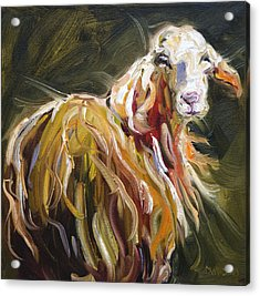 Abstract Sheep Acrylic Print