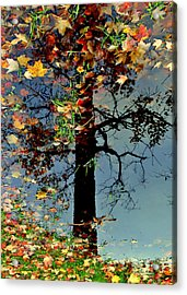 Abstract Tree Acrylic Print by Frozen in Time Fine Art Photography