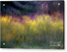 Abstract Viii Goldenrod Acrylic Print by A K Dayton