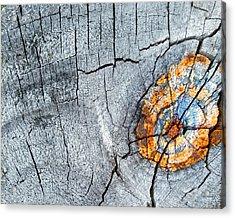 Abstract Woodgrain Upclose 6 Acrylic Print