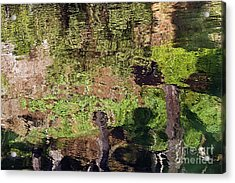 Acrylic Print featuring the photograph Abstracted Reflection by Kate Brown