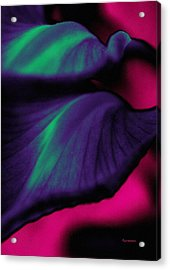Abstracting Nature's Flow Acrylic Print