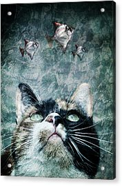 Abyss Cat Nr 2 Acrylic Print by Laura Melis