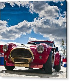 Ac Cobra Acrylic Print by Mike Hayward