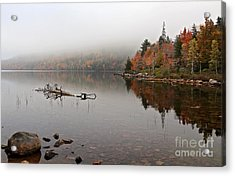 Acadia In The Fog Acrylic Print