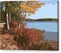 Acadia National Park Carriage Road Acrylic Print by Elaine Plesser