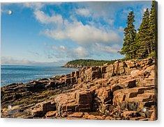 Acadia Shoreline Acrylic Print