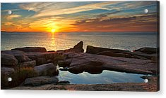 Acadia Sunrise Acrylic Print by Darylann Leonard Photography