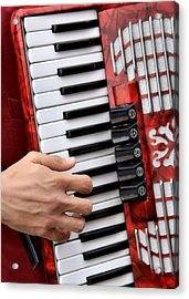 Accordian Acrylic Print by James Stough