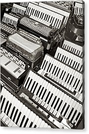 Accordions Acrylic Print