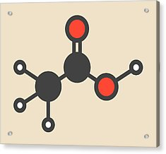 Acetic Acid Molecule Acrylic Print by Molekuul