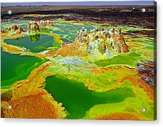 Acid Lakes Of Dallol Volcano Acrylic Print by Liudmila Di