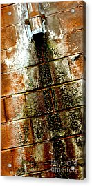 Acrylic Print featuring the photograph Acid Rain by Christiane Hellner-OBrien