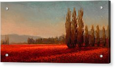 Across The Tulip Field - Horizontal Landscape Acrylic Print