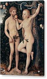 Adam And Eve Acrylic Print by Lucas Cranach Elder