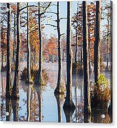 Adams Mill Pond 54 Acrylic Print