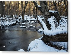 Adamsville Brook Acrylic Print by Andrew Pacheco