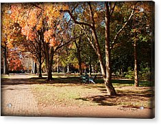 Adirondack Chairs - Davidson College Acrylic Print by Paulette B Wright