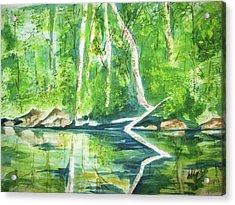 Acrylic Print featuring the painting Adirondack Zen by Ellen Levinson