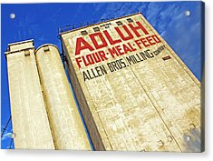 Adluh Flour Acrylic Print