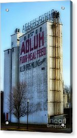 Adluh Flower Mill Acrylic Print by Skip Willits