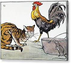 Aesop: Cat, Cock, And Mouse Acrylic Print by Granger
