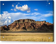 Aferican Grass And Mountain In Sossusvlei Acrylic Print