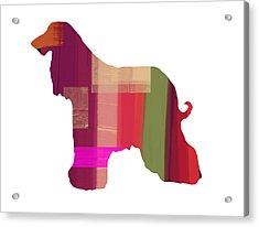 Afghan Hound 2 Acrylic Print by Naxart Studio