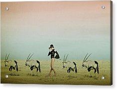 Africa Iv Acrylic Print by Christine Von Diepenbroek