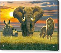 Africa Triptych Variant Acrylic Print by Chris Heitt